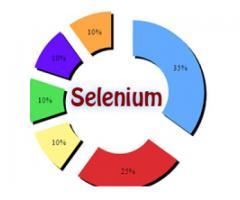 selenium online training in malaysia,canada,australia