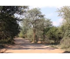 Leeupoort 2 Luukse woonstel te huur vir naweke en vakansie in die bosveld naby Thabazimbi Limpopo