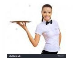 Waiters / waitresses