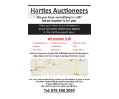 AUCTION IN HARTEBEESPOORT