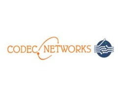 CODEC Networks Provides Security Services & Cyber security / IT training in delhi.