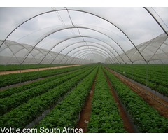 Green House South Africa .Tunnel Gauteng .Green House Mpumalanga 071943012