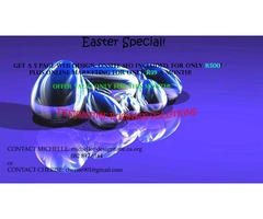 Web Design Easter Specials