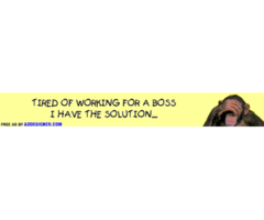 Are you tired of working for a boss?