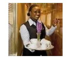 Professional waiters, Chefs and bartenders needed 4hotels around Joburg