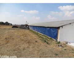 Agricultural Tarpaulins For sale